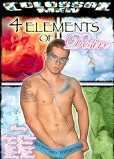 4 Elements Of Desire DVD
