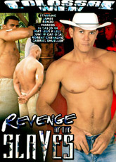 Revenge Of The Slaves DVD